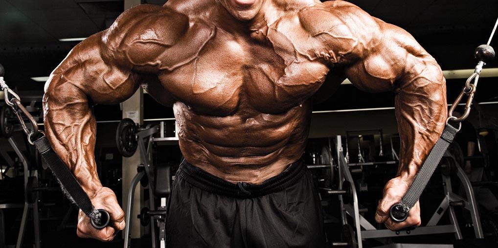 С чем можно сочетать тренировку груди?
