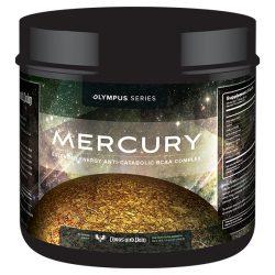 mercury bcaa endurance
