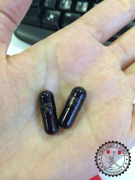 Nutrex Lipo 6 Black отзыв