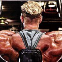 Тренировка плеч на массу – основы, программа и лучшие упражнения!