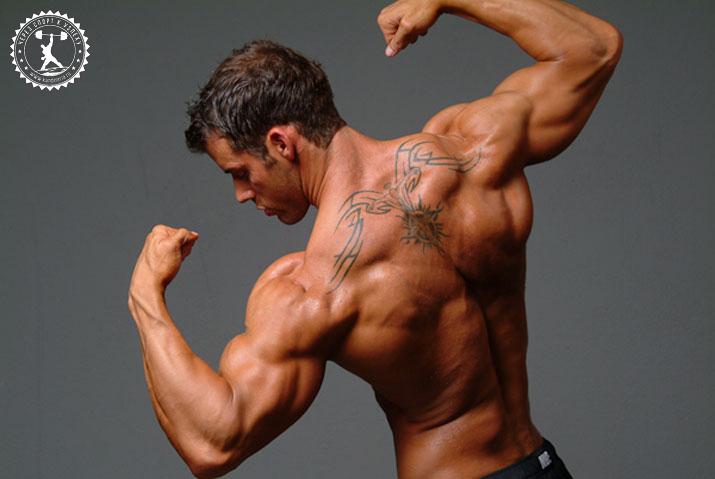 Как увеличить массу плеч дома?