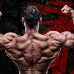 Тренировка спины и плеч в один день – кому подойдёт данный сплит?