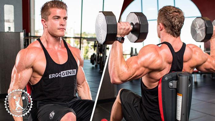 Программа тренировок спина/плечи