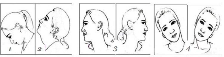 Развороты шеи