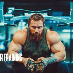Упражнения на заднюю дельту плеча: комплекс упражнений в тренажерном зале и домашних условиях